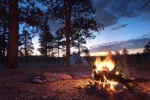 Campfire at dawn